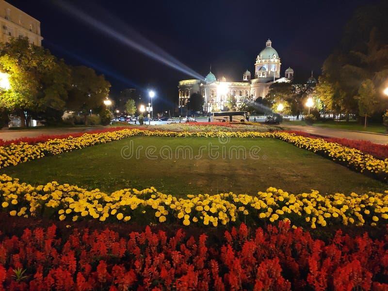Serbiens nationalförsamling royaltyfria bilder