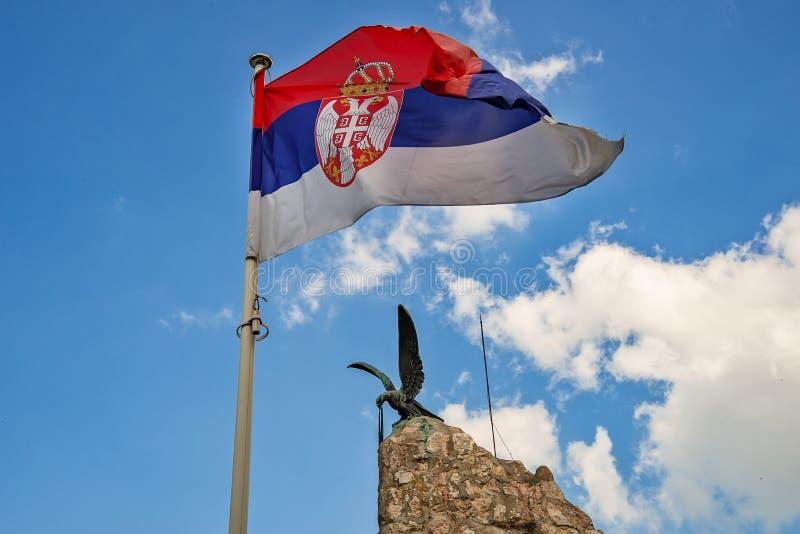 Serbisk flagga och örn royaltyfria foton
