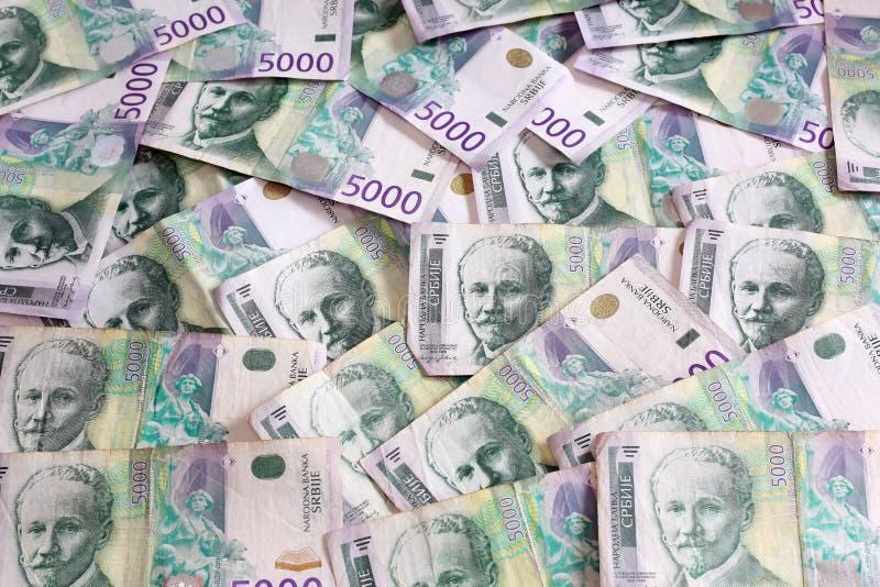 Serbisk valuta - en hög av 5000 dinar sedlar arkivfoton
