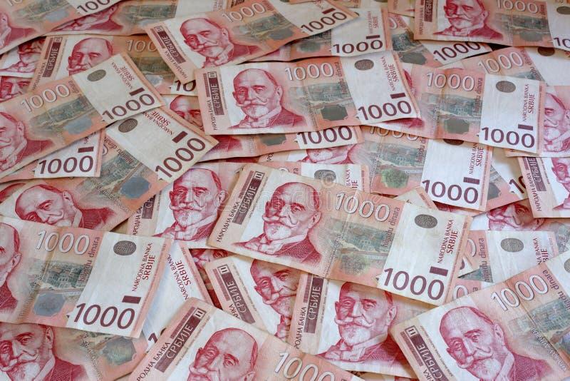Serbisk valuta - en hög av 1000 dinar sedlar arkivfoto