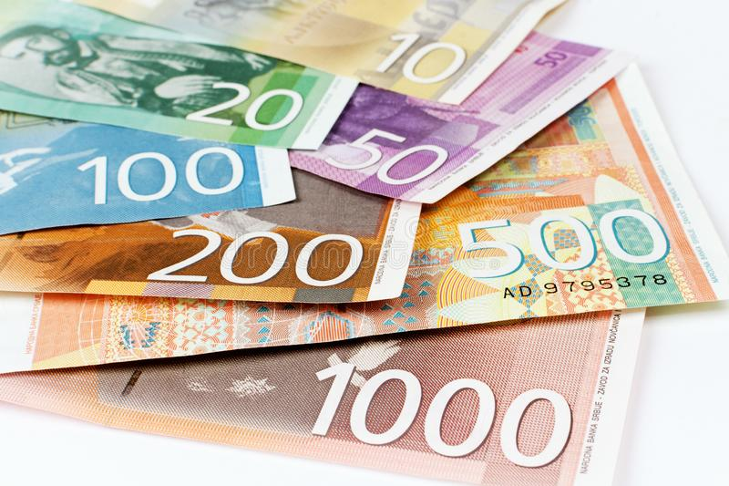 Serbiska dinarsedlar royaltyfria bilder
