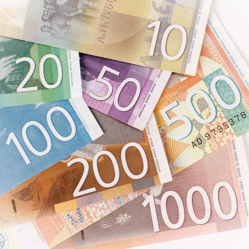 Serbiska dinarsedlar royaltyfri foto