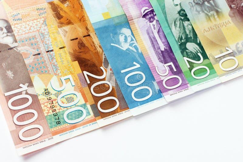 Serbiska dinarsedlar arkivbilder