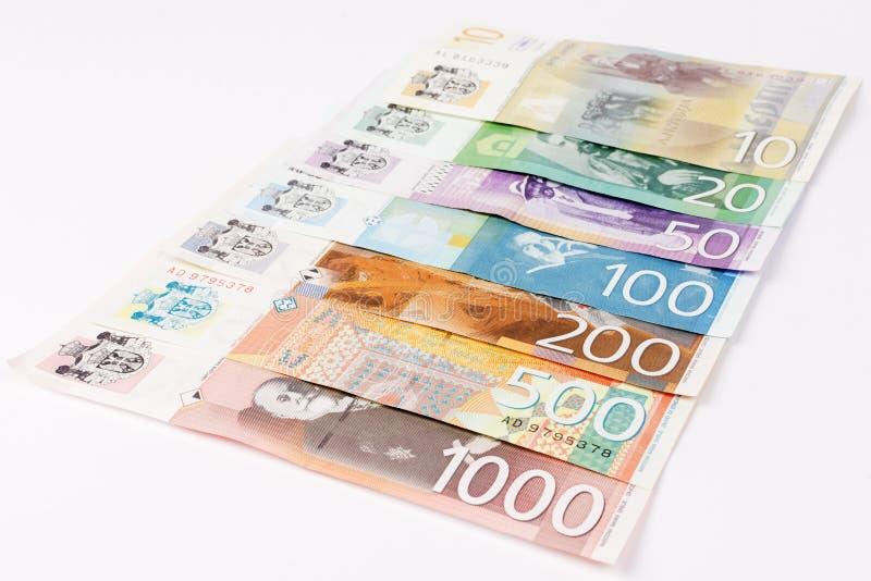 Serbiska dinarsedlar royaltyfri fotografi