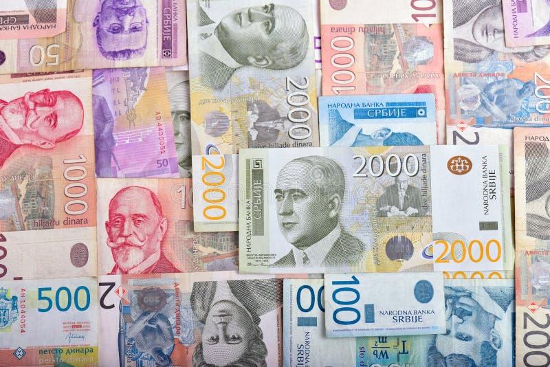 Serbiska pengar RSD royaltyfri bild