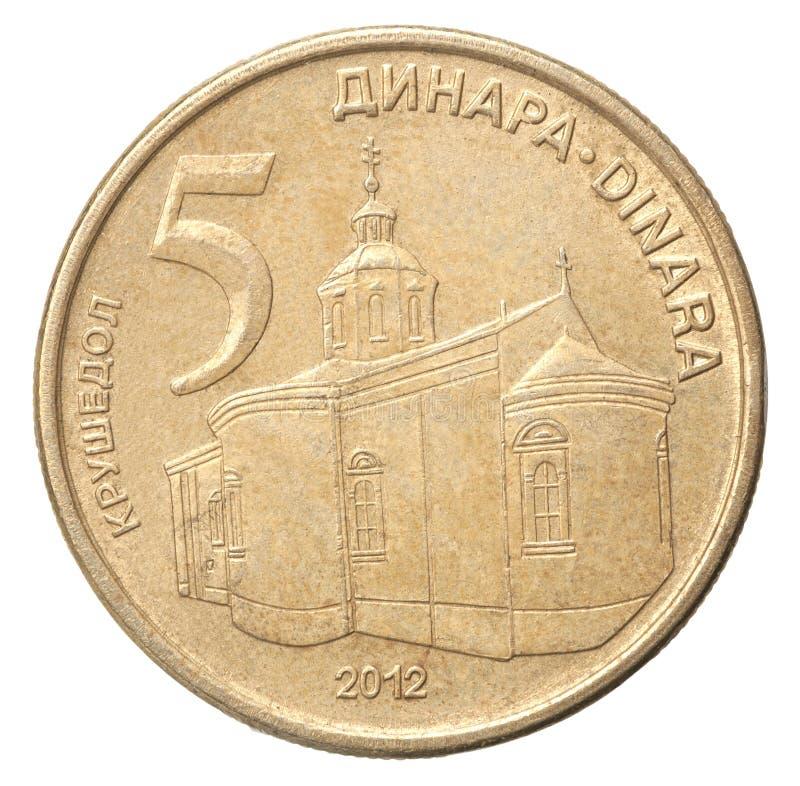 Serbiskt dinarmynt royaltyfria bilder