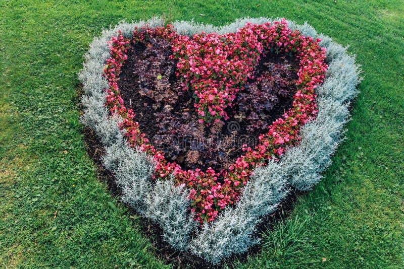 Serca kształtny flowerbed fotografia stock