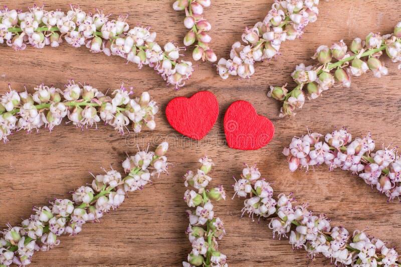 Serca z kwiatem na drewnie fotografia royalty free