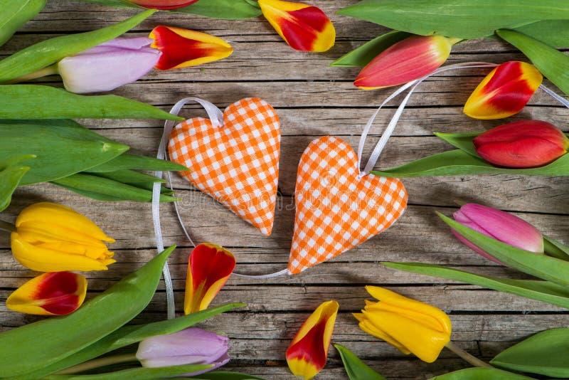 Serca z tulipanami zdjęcie royalty free