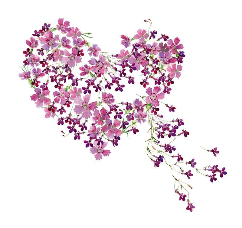 Serce akwarela kwiaty lobelia i dziki goździk royalty ilustracja