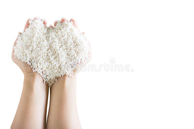serce forma biali ryż w woman& x27; s ręki zdjęcie royalty free