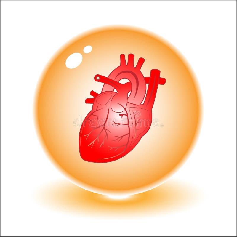 serce ilustracyjny wektora ilustracji