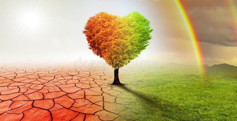 Serce kształtujący drzewo w surrealistycznym pustynia krajobrazie zdjęcie stock