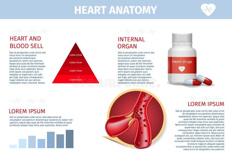 Serce, naczynie terapii opieki zdrowotnej Realistyczny sztandar ilustracja wektor