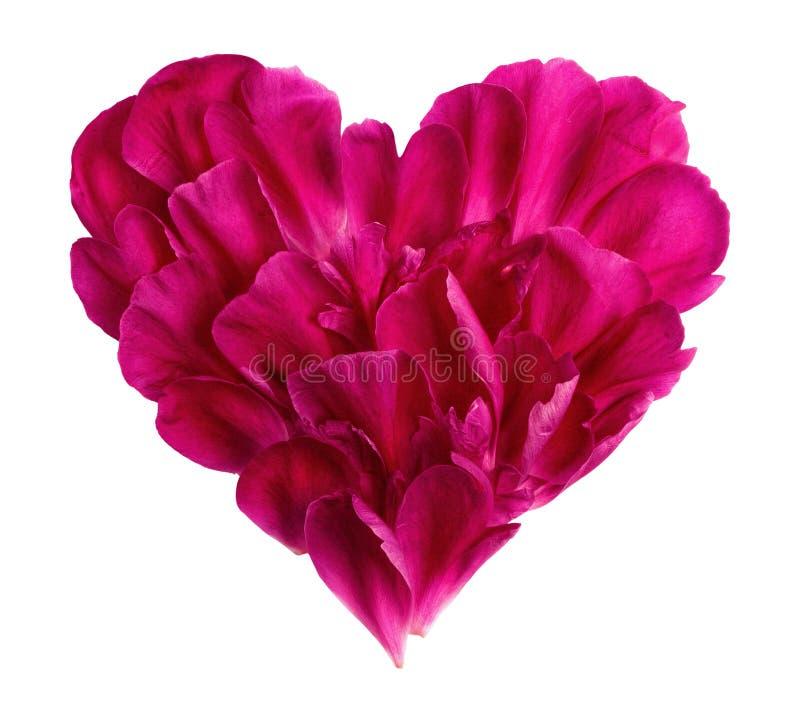Serce od płatków kwiat obrazy royalty free