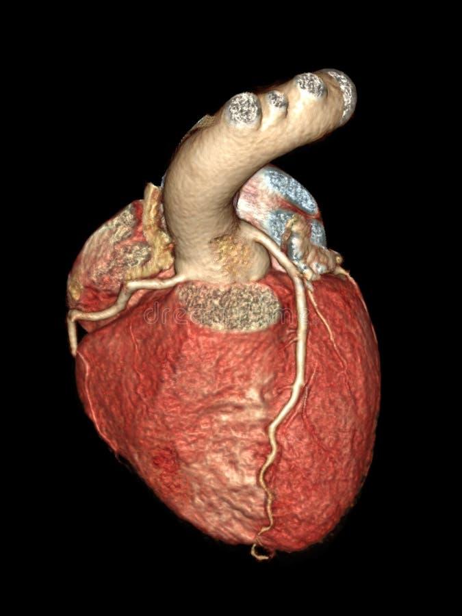 Serce odizolowywający na czerni zdjęcia stock