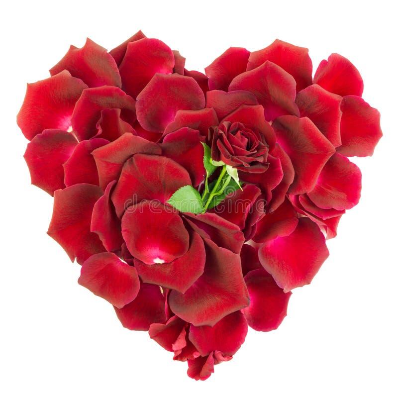 Download Serce różani płatki obraz stock. Obraz złożonej z heart - 28967533