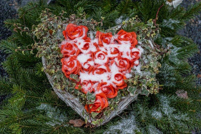Serce róże i śnieg fotografia stock