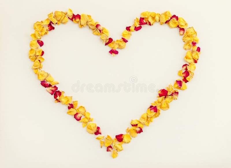 Serce robić koloru żółtego i czerwieni róży płatki zdjęcia royalty free