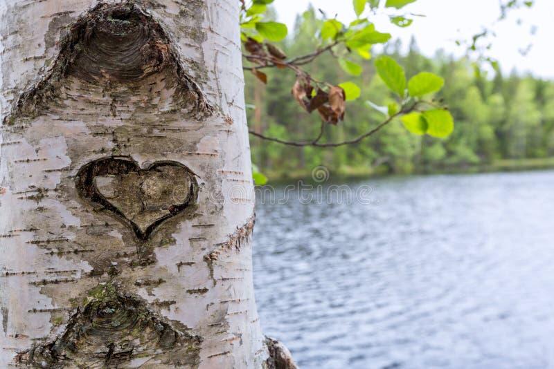 Serce rzeźbił na barkentynie drzewo zdjęcia stock