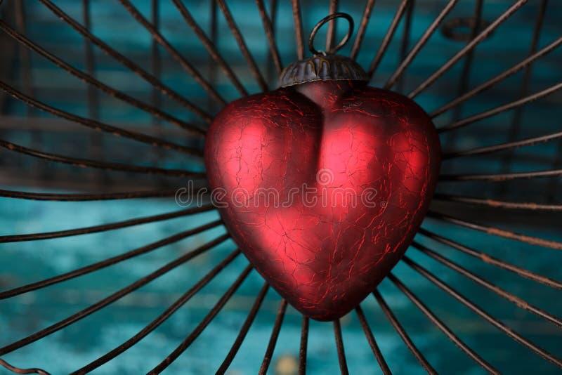Serce w klatce zdjęcia stock