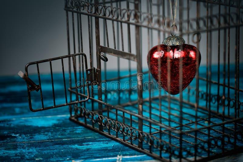 Serce w klatce zdjęcie stock