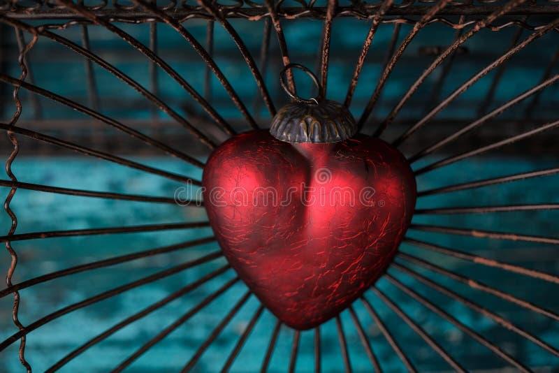 Serce w klatce obraz stock