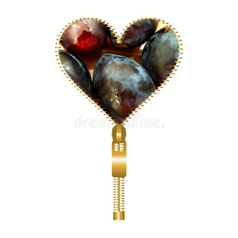 Serce z śliwkami ilustracji