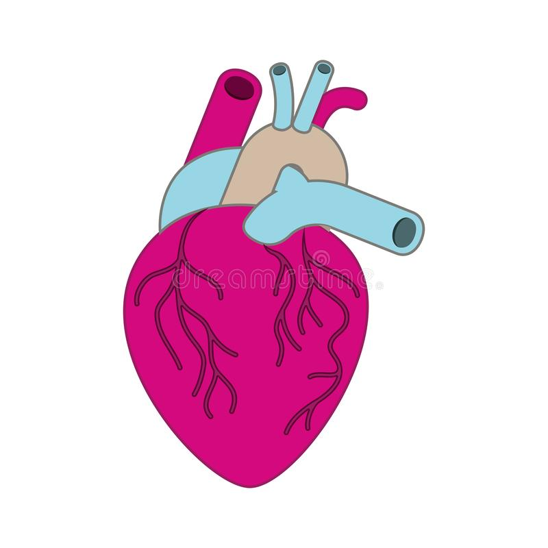 Serce z żyły odosobnioną ikoną royalty ilustracja