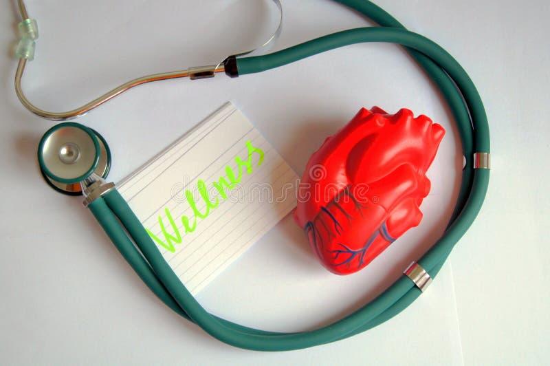 Serce z stetoscop fotografia royalty free