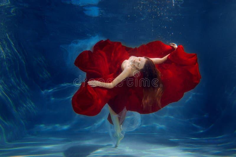 Sereia da menina Cena subaquática Uma mulher, um modelo de forma no fotografia de stock