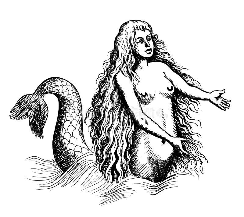 Sereia ou sirene ilustração do vetor