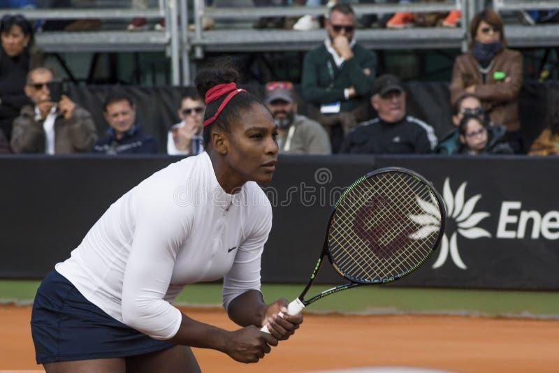 Serena Williams Brindisi nakarmoina filiżanka 2015 obraz stock