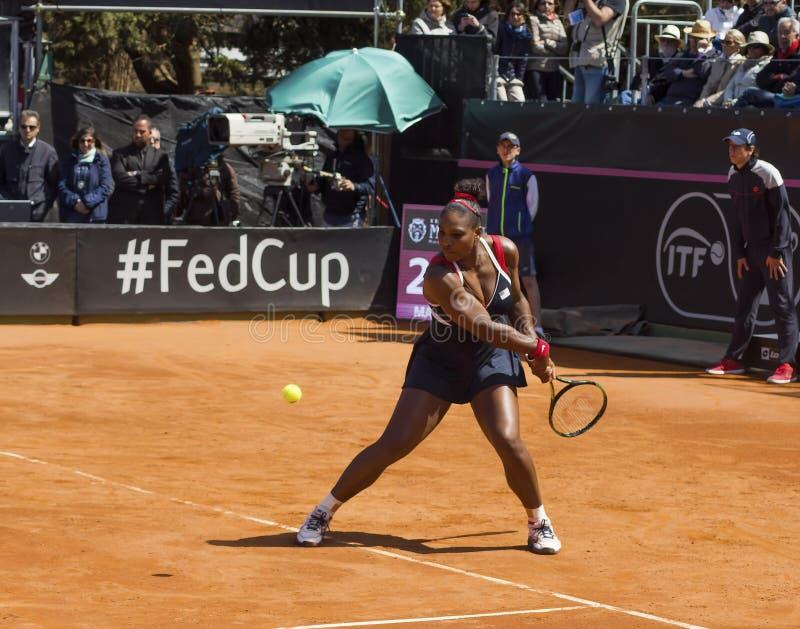 Serena Williams Brindisi nakarmoina filiżanka 2015 obraz royalty free