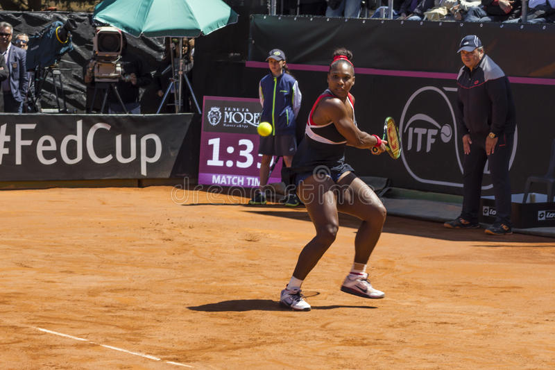 Serena Williams Brindisi nakarmoina filiżanka 2015 obrazy stock