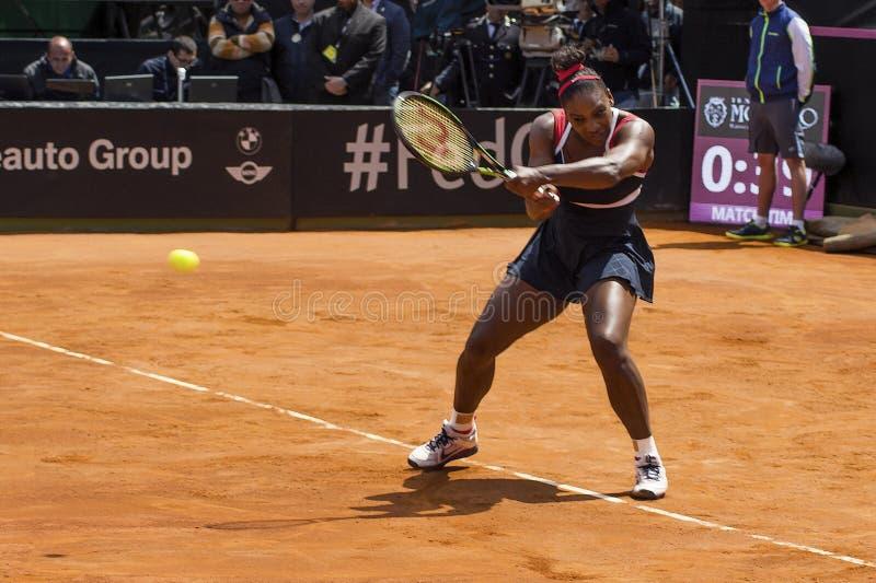 Serena Williams Brindisi nakarmoina filiżanka 2015 zdjęcie royalty free