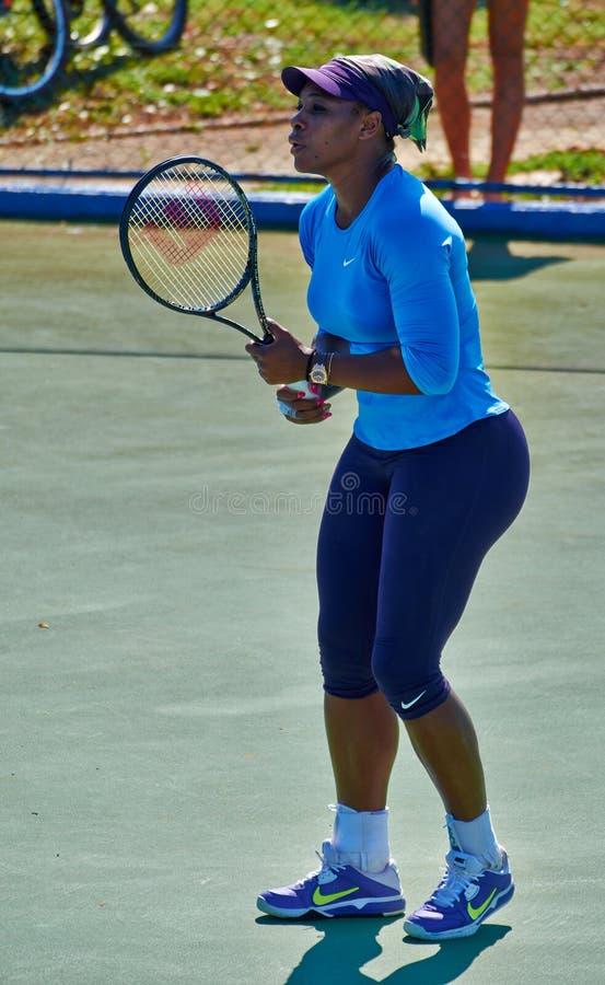 Serena Williams In Umag, Croácia imagem de stock