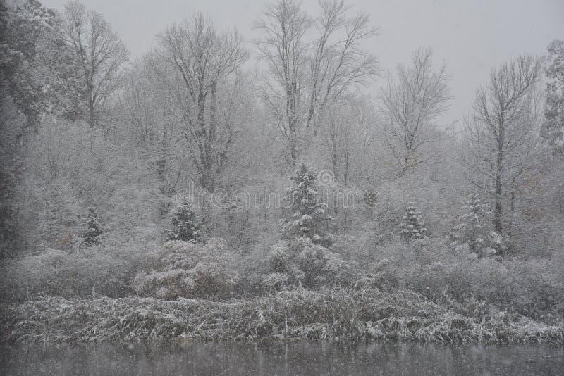 Serene Autumn Snowfall fotos de archivo