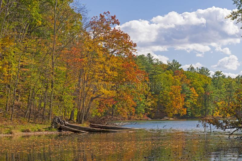Serene Change of the Seasons on a Quiet Lake stock images