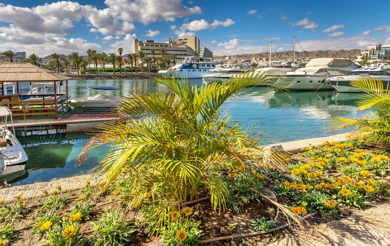 Central marina in Eilat, Israel. Serene day at central marina in Eilat-famous resort city in Israel, famous place for tourism, travel and blissing vacation stock images