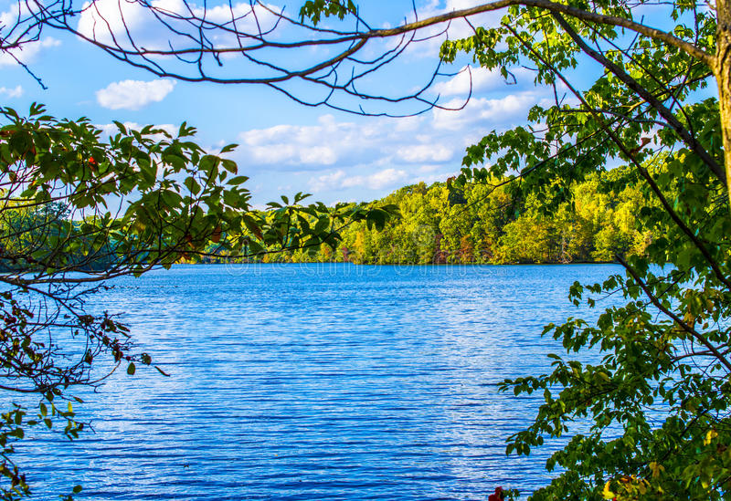 Serene Fall Lake. A lake during fall on a sunny day. Lake Colts Neck, NJ royalty free stock photo
