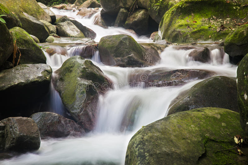 Serene flow of a small waterfall. Serene and silky water flow of a waterfall within a tropical forest stock photos