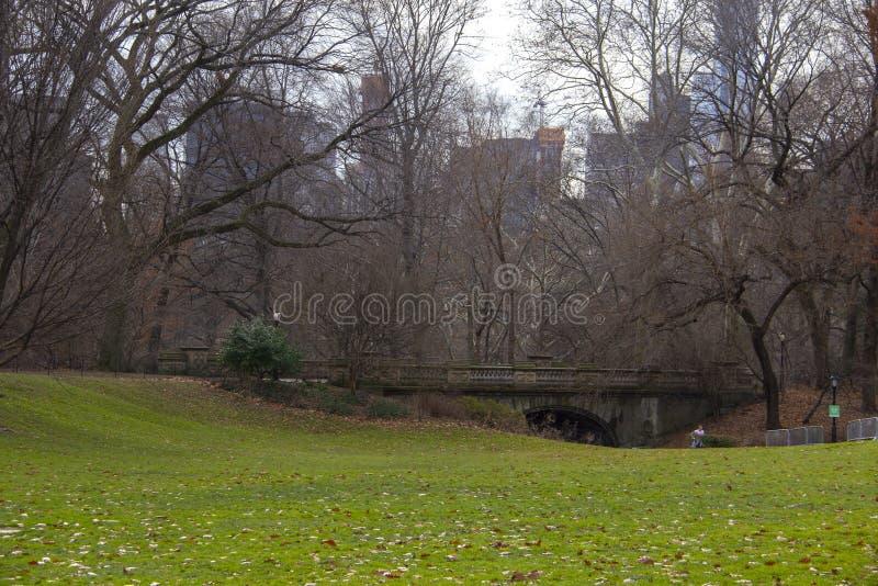 Serene hoek van Central Park stock fotografie