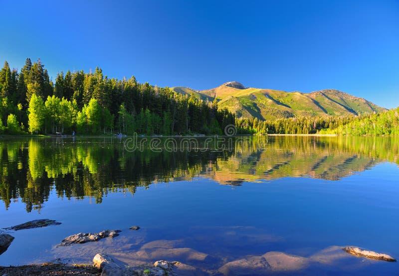 Serene lake Payton in Utah. Serene lake in Utah with beautiful reflection of the mountain and trees stock photos