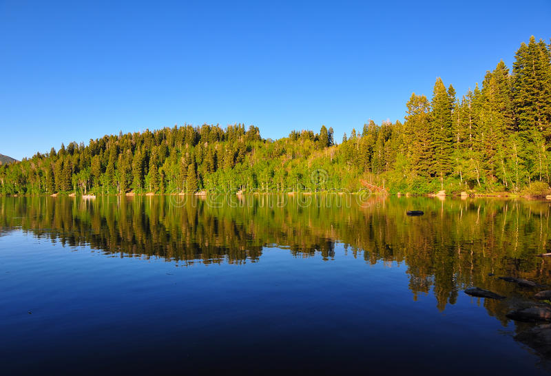 Serene lake Payton in Utah. Serene lake in Utah with beautiful reflection of the mountain and trees stock images