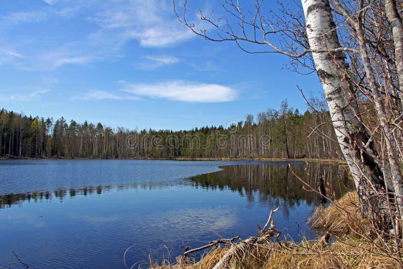 Serene Lake Scenery in Finland stock photo