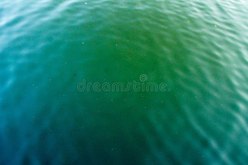 Serene Lake Waters photographie stock libre de droits