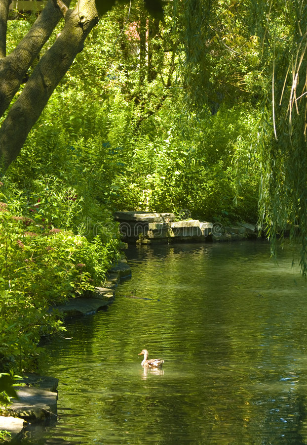 Serene Landscape Royalty Free Stock Photo