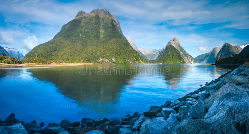 Serene Morning at Milford Sound royalty free stock images