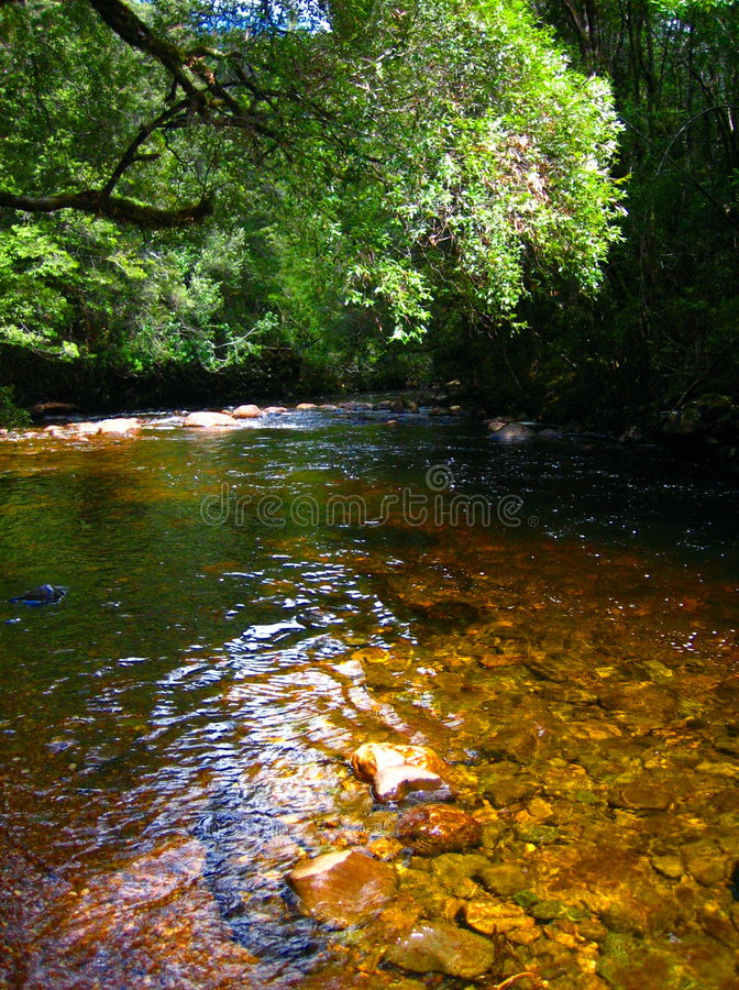 Serene peaceful river royalty free stock images